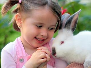¿Los conejos son buenos compañeros para los niños?