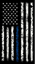 Blue Line Cropped.png