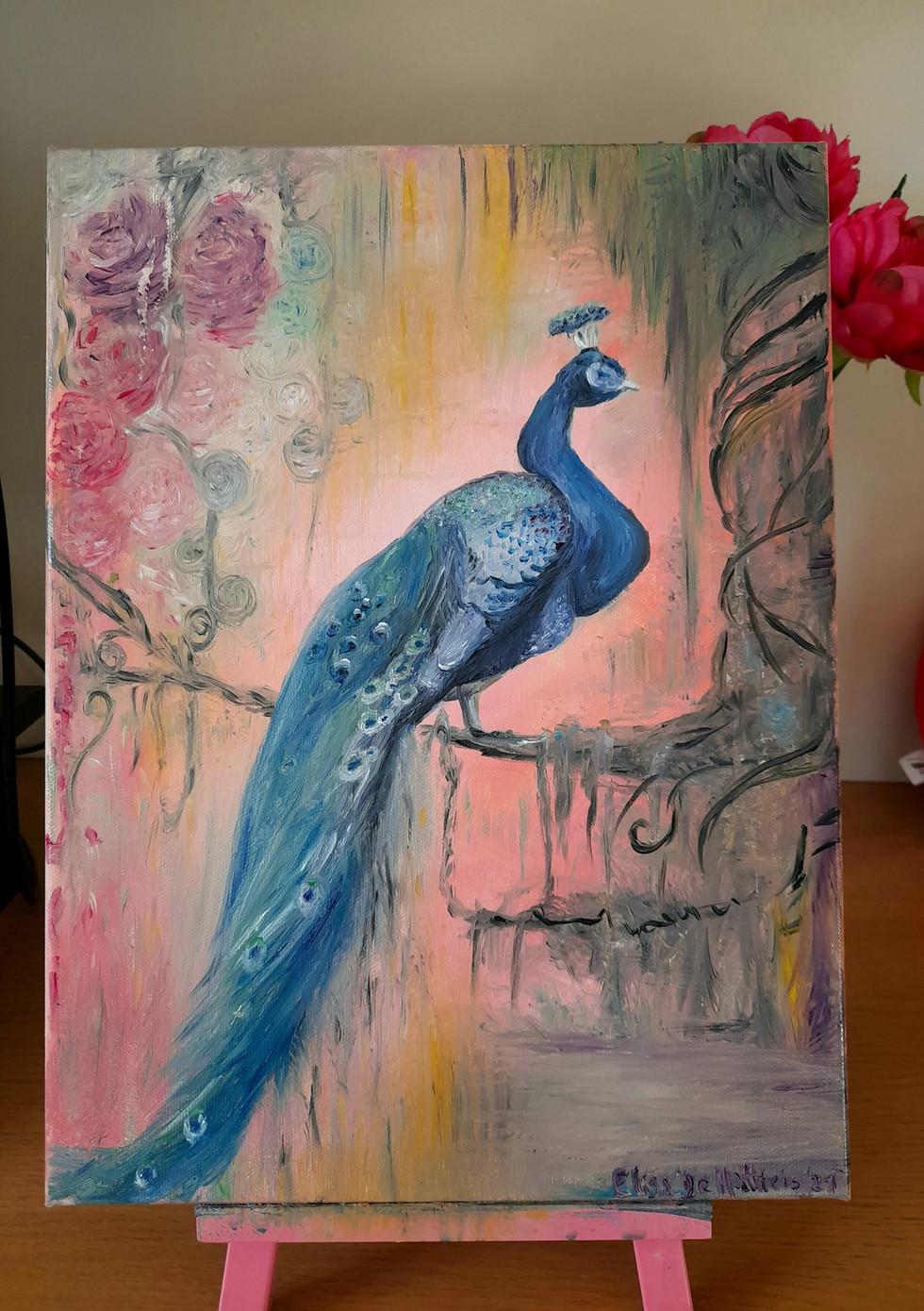 Rainy Forest Peacock