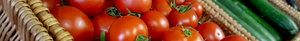 tomatoes in a basket for food origin testing