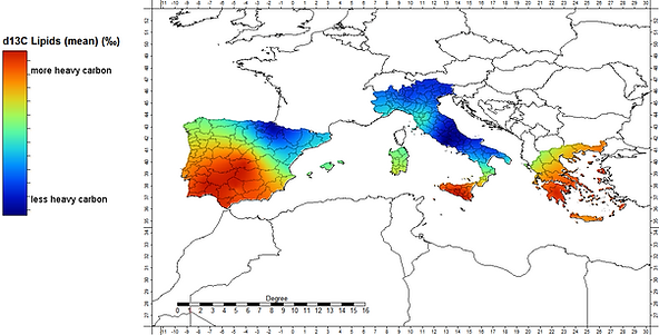Carbon isotope ratios in European olive oils