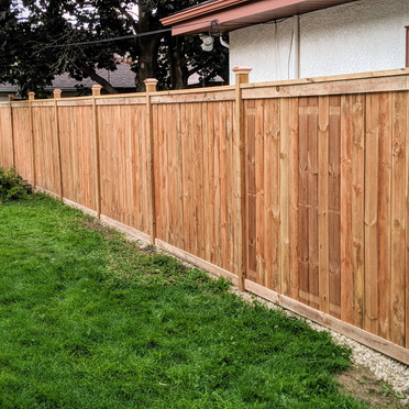 Privacy fence build