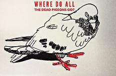 pigeon flyer.jpeg
