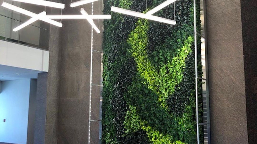 This green wall looks absolutely gorgeous and completes the interior design to perfection.