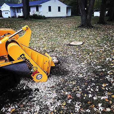Mentor Ohio #lakeshoregrindings #stump #
