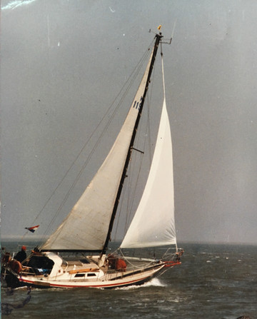 Lone gull history  under sail .jpeg