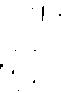 BOB 2019 Logo_RGB_white.png
