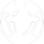 Circular_Skull_Patch_White-1.png