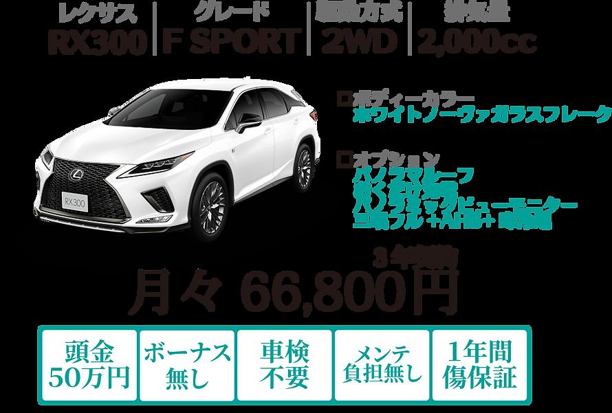 WEB-RX300.png