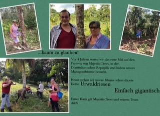 Haben Sie Ihre Bäume bei uns auch schon besucht?