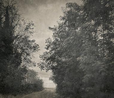 Série Landscape XIX