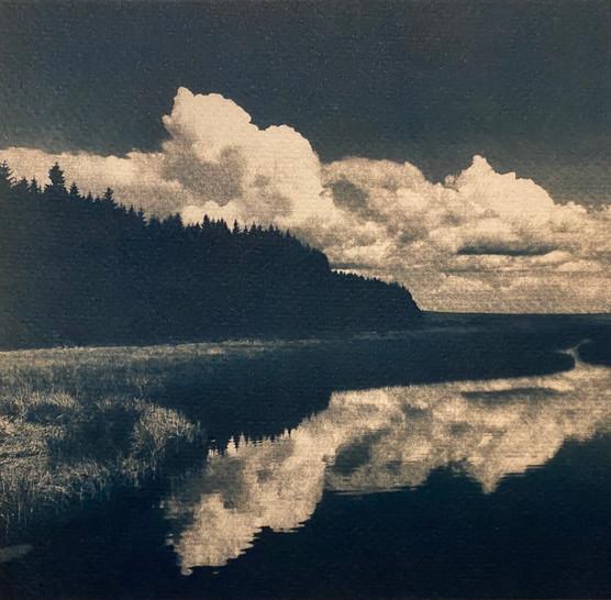Landscape XXV