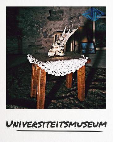 universiteitsmuseum.jpeg