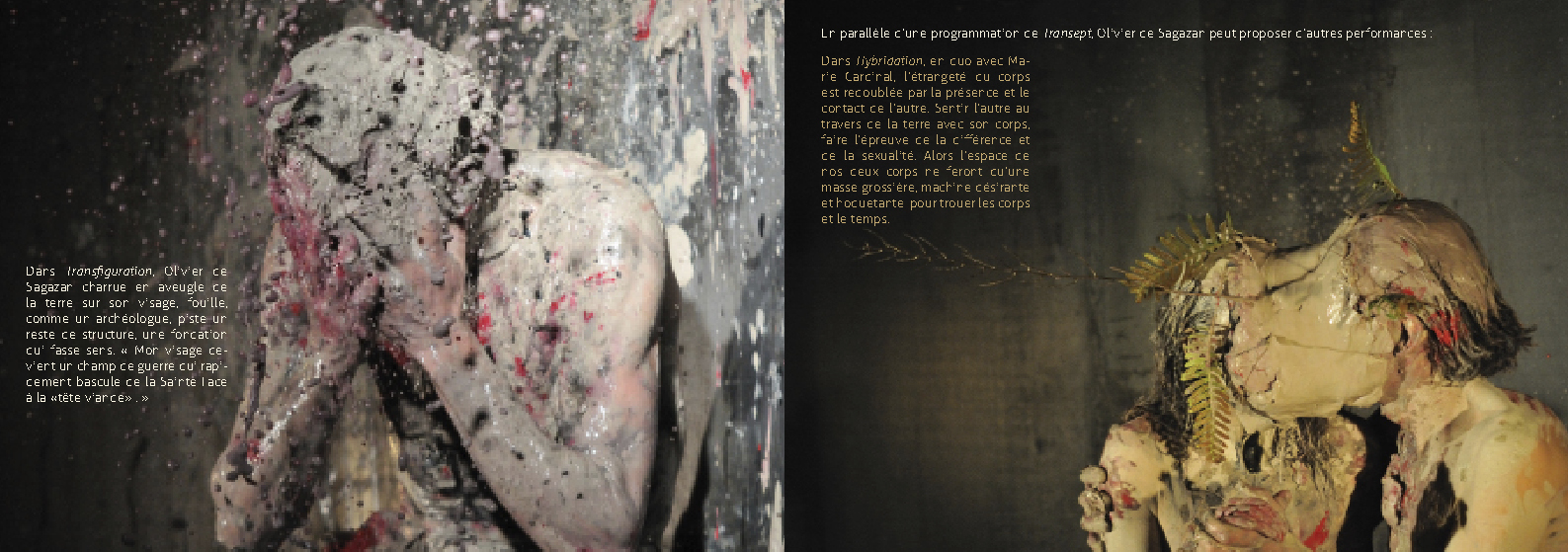 Photographe | Infographiste | Landes