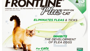 How to identify counterfeit Merial Frontline Flea and Tick Products