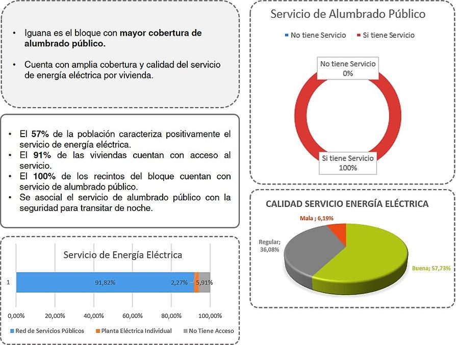 energia_iguana.jpg