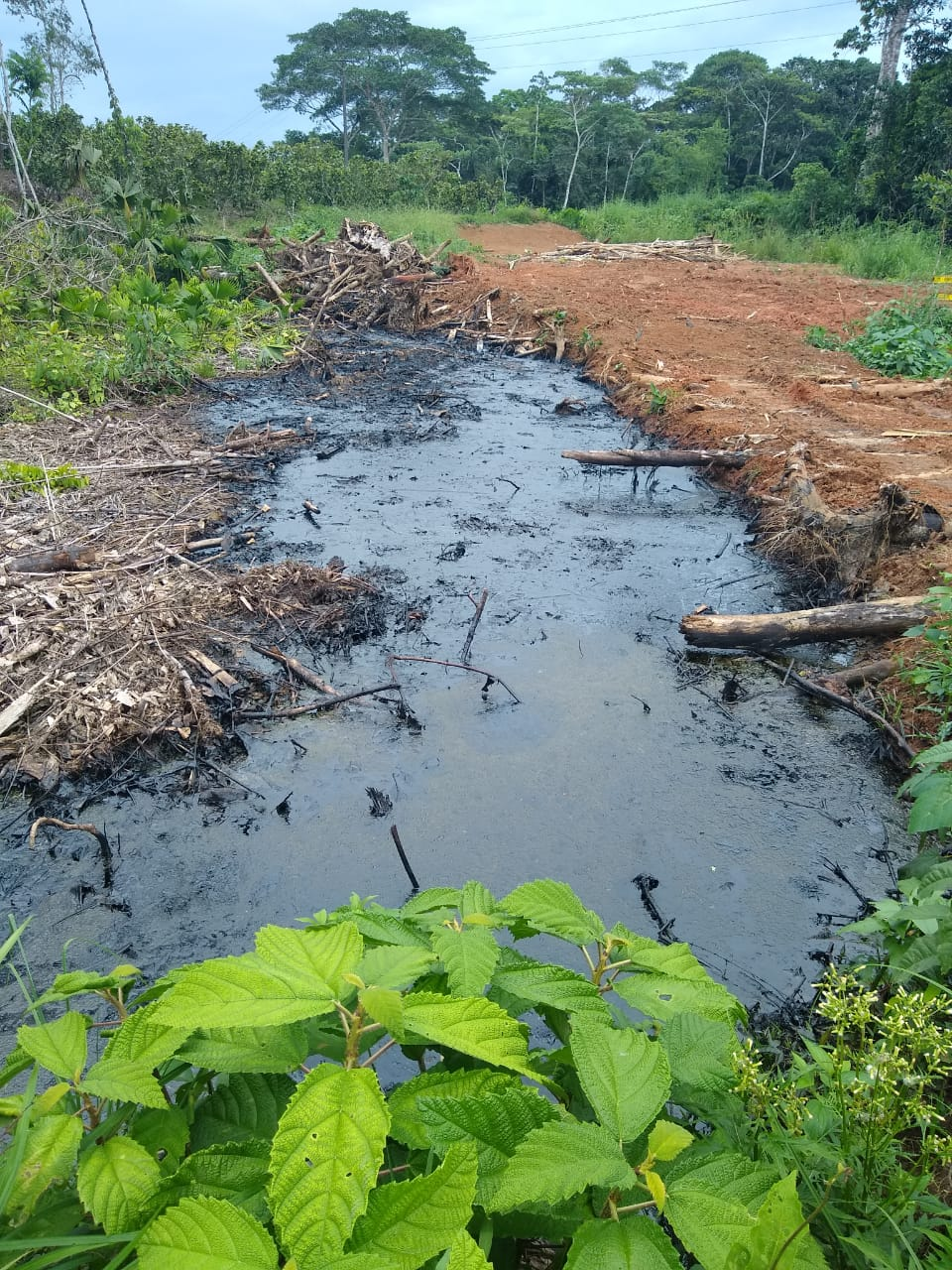 Pasivo Ambiental en Charapa 1