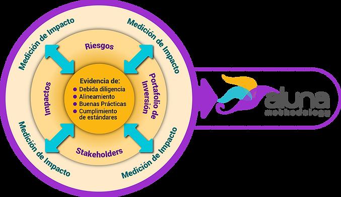 metodología.png