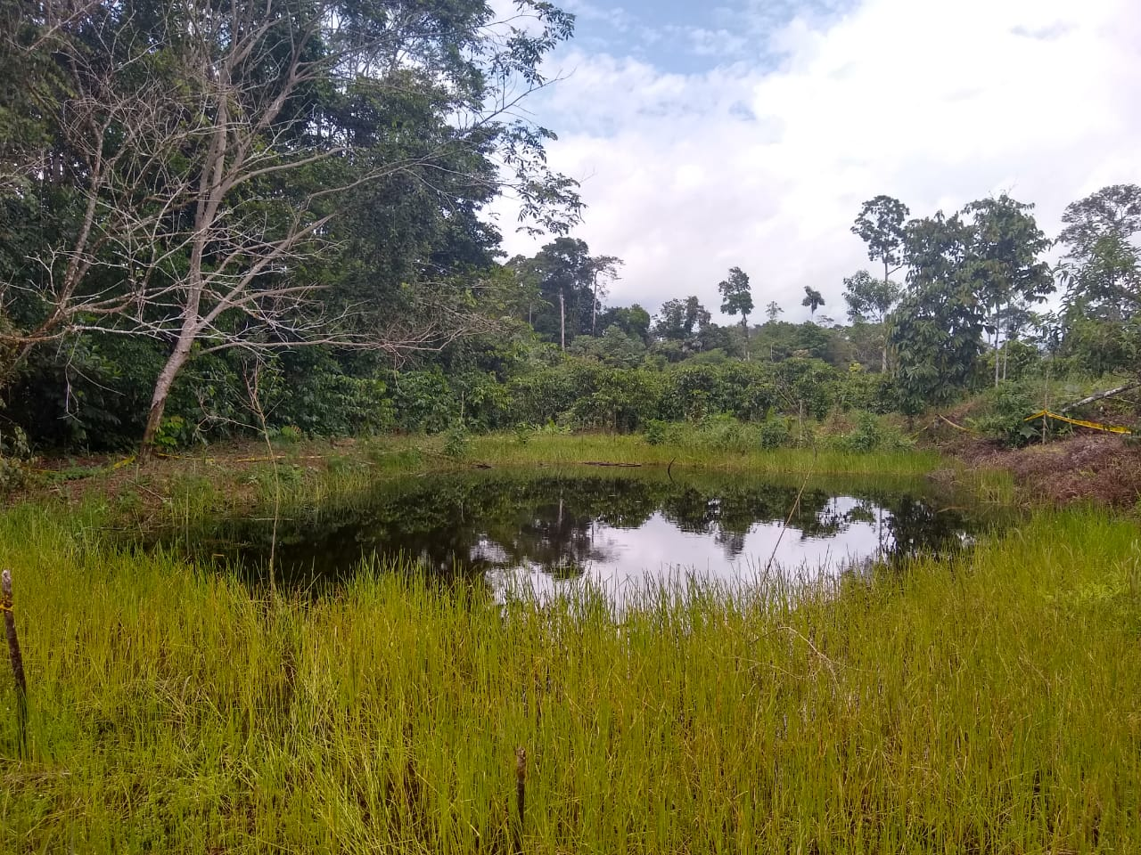 Pasivo Ambiental en Chanangué
