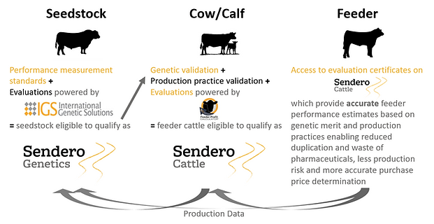 Sendero Diagram v2.PNG