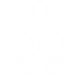 SB Logo white.png