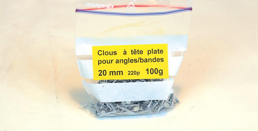 65.110 Clous pour fixer les angles et les bandes-supports