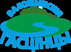 лого ВГ.png