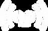RDC лого БЕЛЫЙ.png