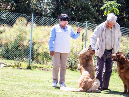 Beneficios de los animales en el Alzheimer