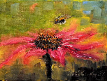 Bees and Echinacea