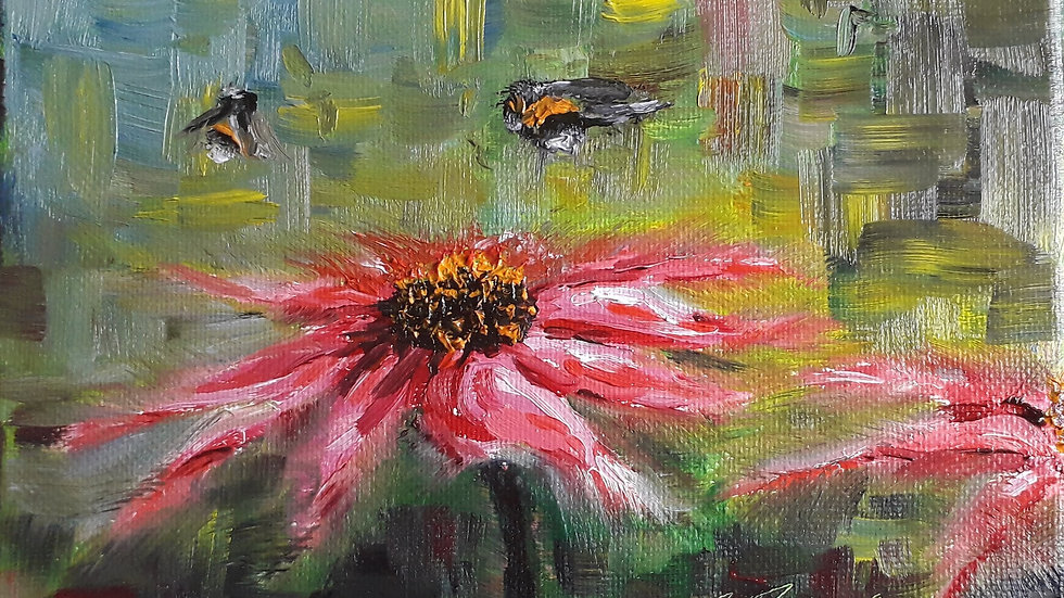 Bees and Echinacea II
