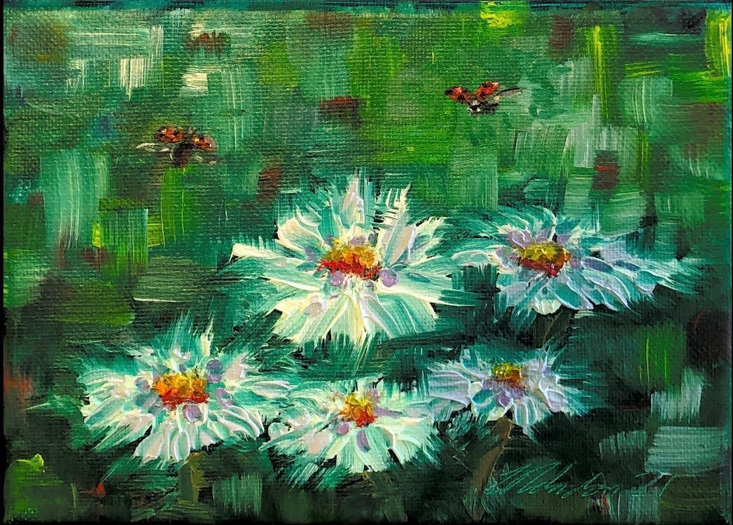 Ladybirds and Daisies
