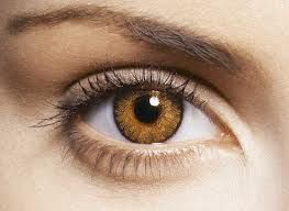honey eye color