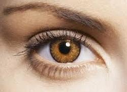 honey eye color