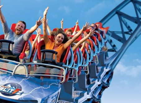 The Midwifery Rollercoaster