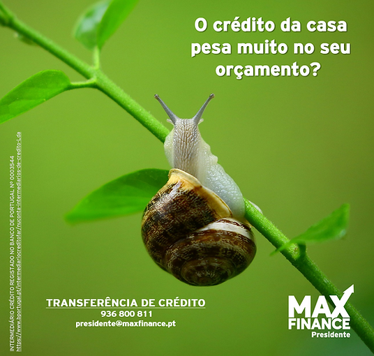 caracol transferencia.png