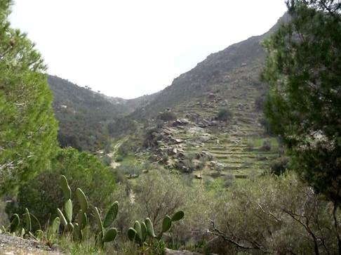 Route des Dolmens et Menhir..JPG
