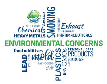 Environmental-Concerns_English.jpg