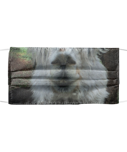 Alpaca, Great Pyr or Custom Print Face Mask