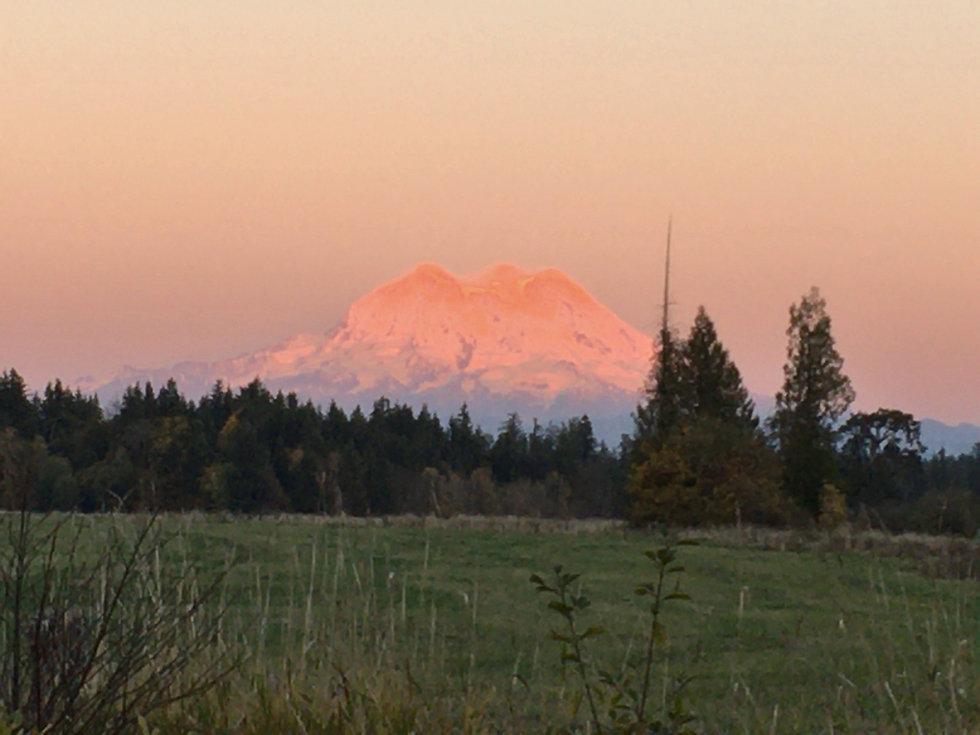 Mt. Rainier at Sunset.jpg