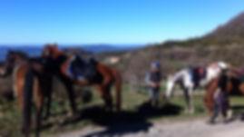 cavalls, doma natral, doma índia, rutes a cavall