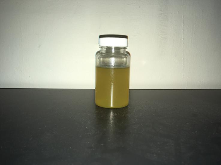 E-coli bacteria test (Swamp)