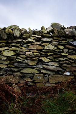 Devonian Stone Wall