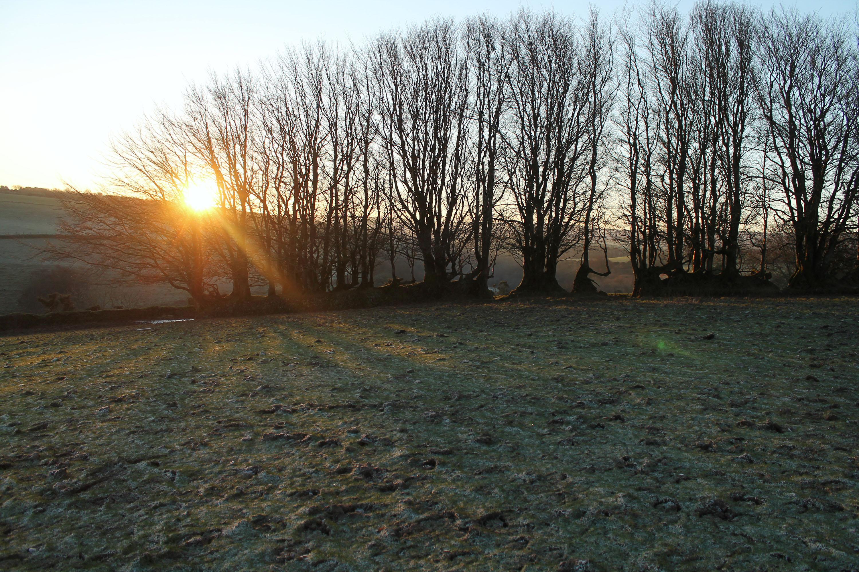 Devon Sun Rise