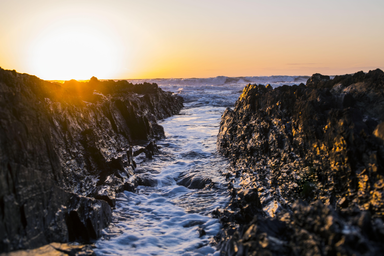 Crodye at High Tide Landscape