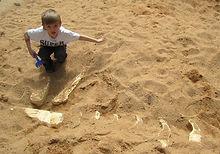 Палеопарк. Раскопки для детей