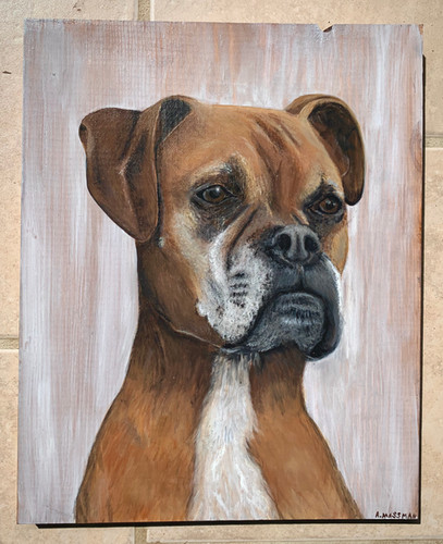 Boxer Painting