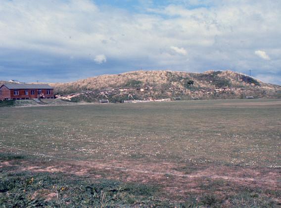 Cricket ground 5-124.jpg