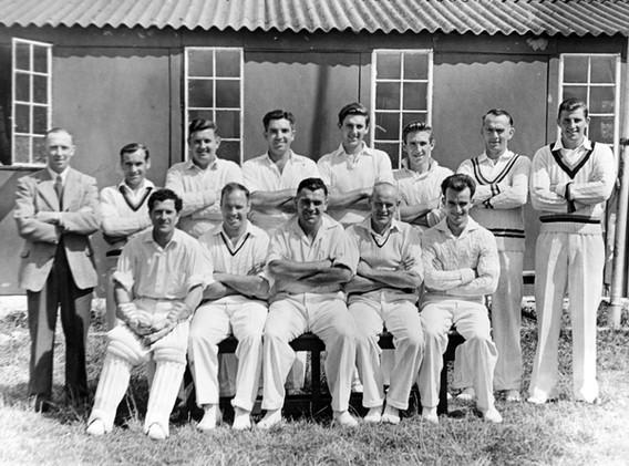 Cricket07.jpg
