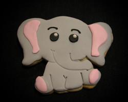 Melissa's Elephant Cookie